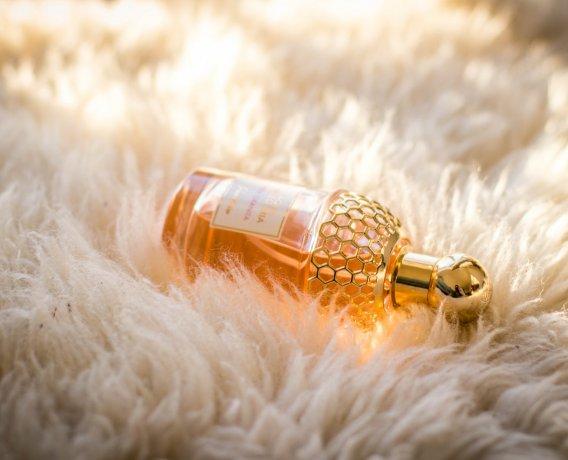 perfumy na kocu