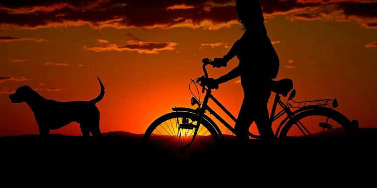 rower wieczorem